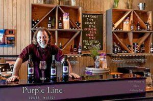 purple line 300x199